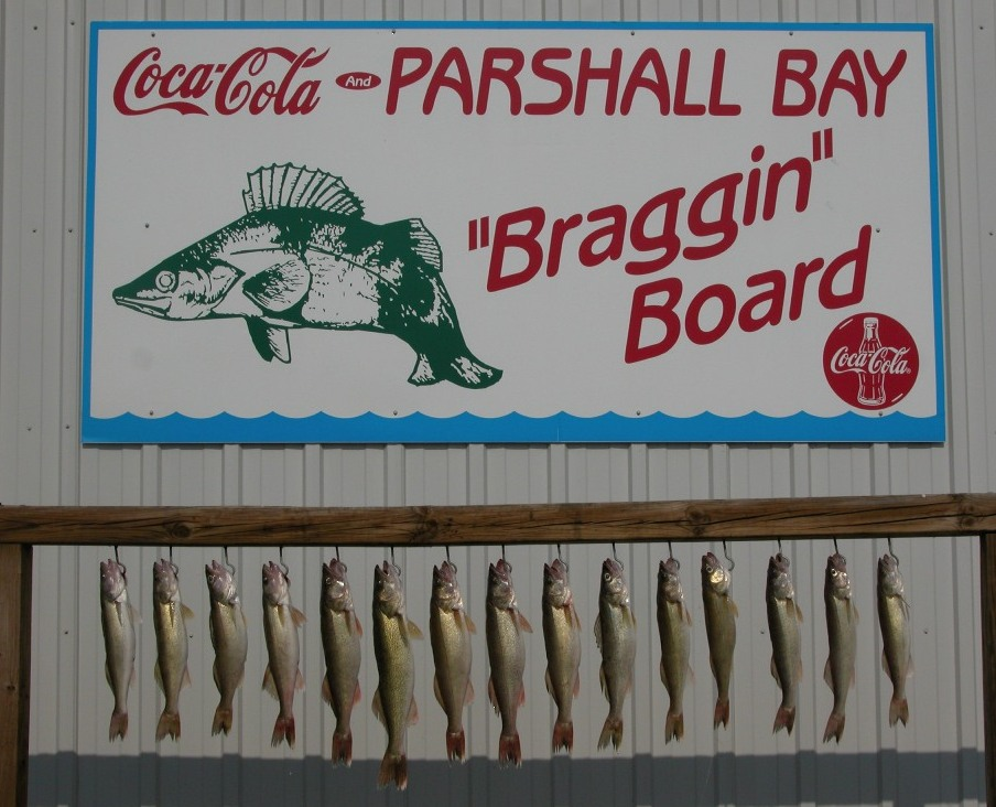 BragginBoardfish